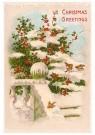 A.N.B.  -  Christmas greetings - Postkaart -  1C2362-1