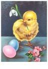 Anonymus  -  Kuiken en  twee paaseieren - Postkaart -  1C2397-1