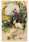 Anonymus  -  Best easter wishes - Postkaart -  1C2422-1