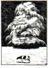 Bernard Essers (1893-1945)  -  Larix, 1930 - Postkaart -  A10271-1