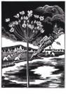Bernard Essers (1893-1945)  -  Zwanebloem, circa 1939 - Postkaart -  A10272-1
