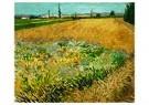 Vincent van Gogh (1853-1890)  -  Wheatfield, 1888 - Postkaart -  A103996-1