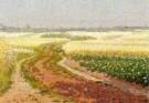 Co Breman (1865-1938)  -  Morgenstond Blaricum - Postkaart -  A10558-1