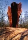 Rudi van de Wint (1942-2006)  -  View - Postkaart -  A10578-1