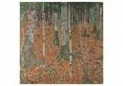 Gustav Klimt (1862-1918)  -  Birkenwald, 1903 - Postkaart -  A106108-1
