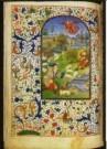 -  Trivulzio-Getjdenboek - Postkaart -  A10685-1