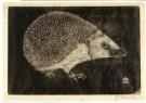 Jan Mankes (1889-1920)  -  Egel - Postkaart -  A11125-1
