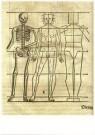 Heinrich Lautensack (1522-1568 -  Gravure uit: Des Cirkels und Richtscheyts - Postkaart -  A11221-1