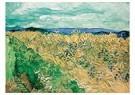 -  Wheatfield With Cornflowers, 1890 - Postkaart -  A112405-1