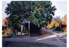 Rob Scholte (1958)  -  Bergense School, dorpsgezichten - Postkaart -  A11476-1