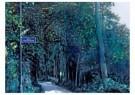 Rob Scholte (1958)  -  Bergense School, dorpsgezichten - Postkaart -  A11477-1
