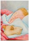 Arja van den Berg (1947)  -  Donald slapend met Gijs, 1987 - Postkaart -  A11491-1