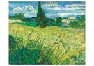 Vincent van Gogh (1853-1890)  -  Green Field, 1889 - Postkaart -  A117246-1
