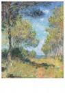 Claude Monet (1840-1926)  -  Allée De Sapins À Varengeville - Postkaart -  A13394-1