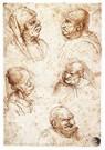 Leonardo da Vinci (1452-1519)  -  Vijf karikatuurkoppen, 1490 - Postkaart -  A13531-1