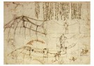 Leonardo da Vinci (1452-1519)  -  Design For A Flying Machine, 1488 - Postkaart -  A13536-1