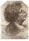 Leonardo da Vinci (1452-1519)  -  Grotesque Head, 1502 - Postkaart -  A13538-1