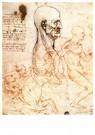 Leonardo da Vinci (1452-1519)  -  Profile Of A Man And Study Of Two Riders, 1497 - Postkaart -  A13578-1