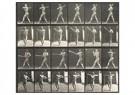 Eadward Muybridge(1830-1904)  -  Man Swinging A Baseball Bat - Postkaart -  A14218-1