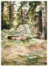Edvard Munch(1863-1944)  -  Summer Day In The Forest - Postkaart -  A18012-1
