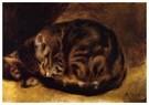 Auguste Renoir (1841-1919)  -  Sleeping Cat - Postkaart -  A20054-1