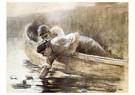 Winslow Homer (1836-1910)  -  Pond Lilies, 1884 - Postkaart -  A26323-1