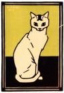 Julie de Graag (1877-1924) - Witte kat, 1917 - Postkaart - A2991-1