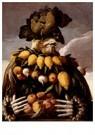 G. Arcimboldo 1526/30-1593  -  Winter - Postkaart -  A30162-1