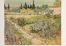 Vincent van Gogh (1853-1890)  -  Tuin te Arles - Postkaart -  A3126-1