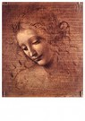Leonardo da Vinci (1452-1519)  -  Female head, 1508 - Postkaart -  A45271-1