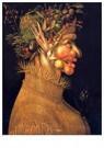 G. Arcimboldo 1526/30-1593  -  The Four Seasons (Original Series) 02 - Summer, 1563 - Postkaart -  A56045-1
