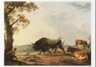 Hendrik Voogd (1768-1839)  -  H.Voogd/Stier + hond/BvB - Postkaart -  A6495-1