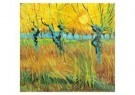 Vincent van Gogh (1853-1890) - Knotwilgen,zon - Postkaart - A6526-1