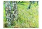 Vincent van Gogh (1853-1890)  -  Gras en bloemen - Postkaart -  A6527-1