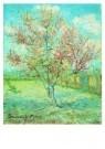 Vincent van Gogh (1853-1890)  -  Bloeiende bomen - Postkaart -  A6530-1