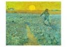 Vincent van Gogh (1853-1890)  -  Zaaier - Sower, 1888 - Postkaart -  A6531-1