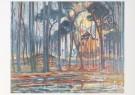 Piet Mondriaan (1872-1944)  -  Bos bij Oele - Postkaart -  A6619-1