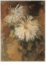 Piet Mondriaan (1872-1944)  -  Twee chrysanten - Postkaart -  A6732-1