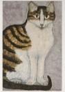 Dorinde van Oort (1946)  -  Dorinde van Oort/duizendpoot - Postkaart -  A7207-1