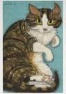 Dorinde van Oort (1946)  -  Verslaggever Poez - Postkaart -  A7224-1