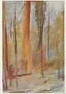 Wolf Kahn (1927)  -  Kahn, W./Mariposa Grove. - Postkaart -  A7493-1