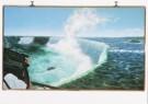 Frank Moore (1953-2002)  -  Niagara - Postkaart -  A7606-1