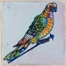Anoniem  -  Spijkertegel met vogel. - Postkaart -  A7862-1