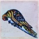 Anoniem  -  Spijkertegel met vogel. - Postkaart -  A7864-1