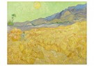 Vincent van Gogh (1853-1890)  -  Wheatfield with a reaper, 1889 - Postkaart -  A79302-1