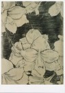 Martin van Vreden (1952)  -  M. v. Vreden/Untitled - Postkaart -  A8051-1