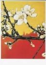 Martin van Vreden (1952)  -  M. v. Vreden/Untitled, 1993 - Postkaart -  A8079-1