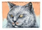 Arja van den Berg (1947)  -  Ik zit in de tuin - Postkaart -  A8127-1