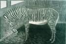 S.Jessurun de Mesquita(1868-19 -  Zebra - Postkaart -  A8490-1