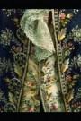 -  Galapak habit ala francaise - Postkaart -  A8536-1
